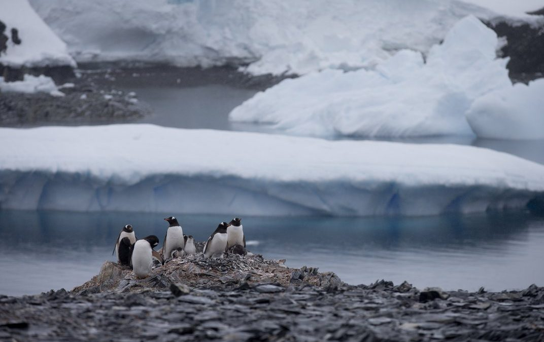 Antarctic ice melting faster than expected