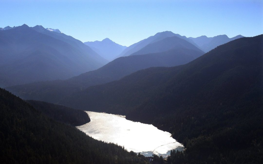 Hydropower isn't carbon neutral after all, WSU researchers say
