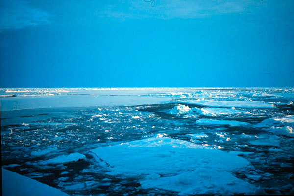 Svalbard above freezing? 'Shocking' temps have huge consequences