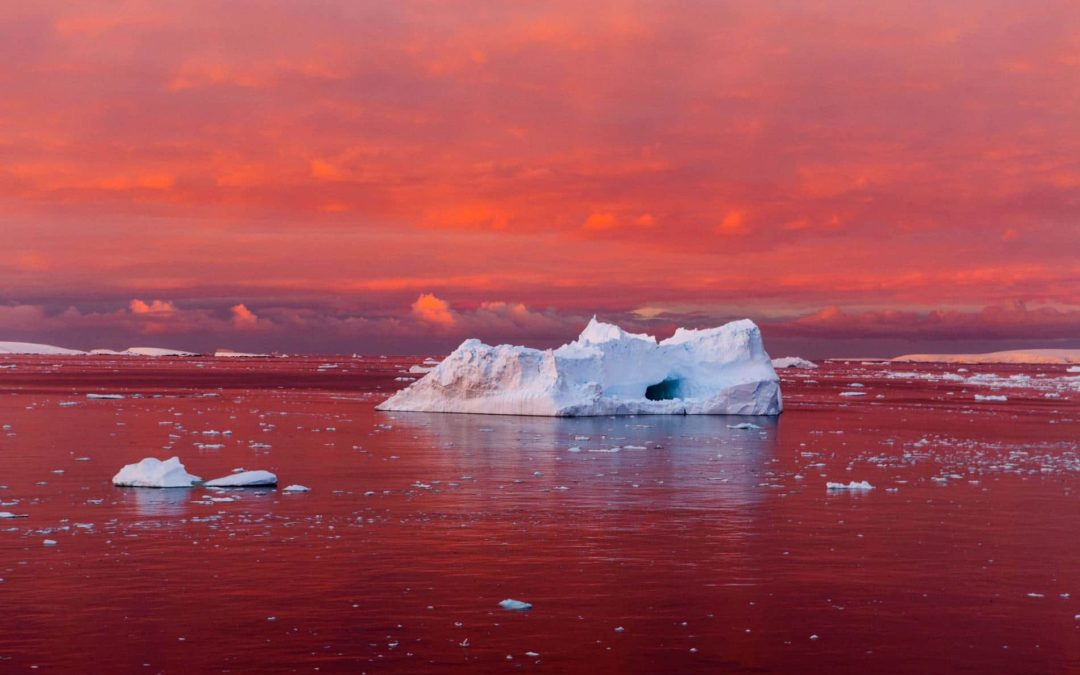 Antarctica Is Melting, and Giant Ice Cracks Are Just the Start