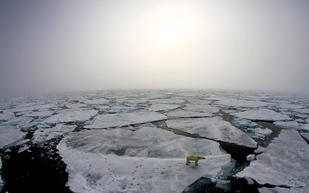 Arctic winter warming events becoming more frequent, longer-lasting