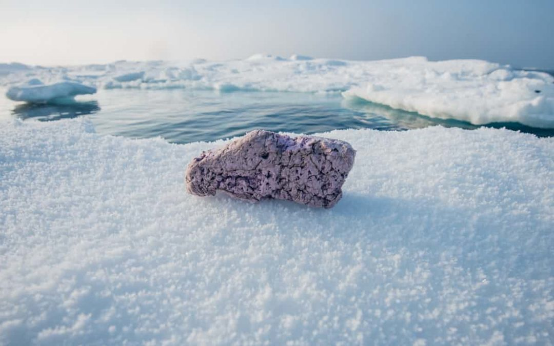 How did that get there? Plastic chunks on Arctic ice show how far pollution has spread