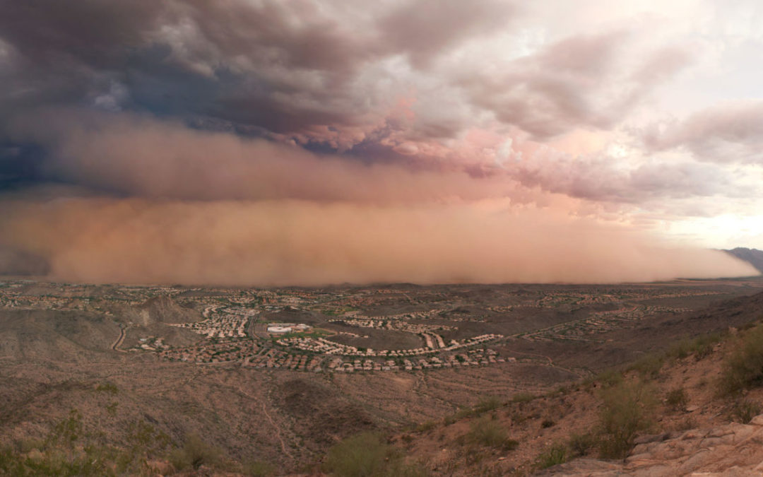Climate Connection: Unraveling the Surprising Ecology of Dust