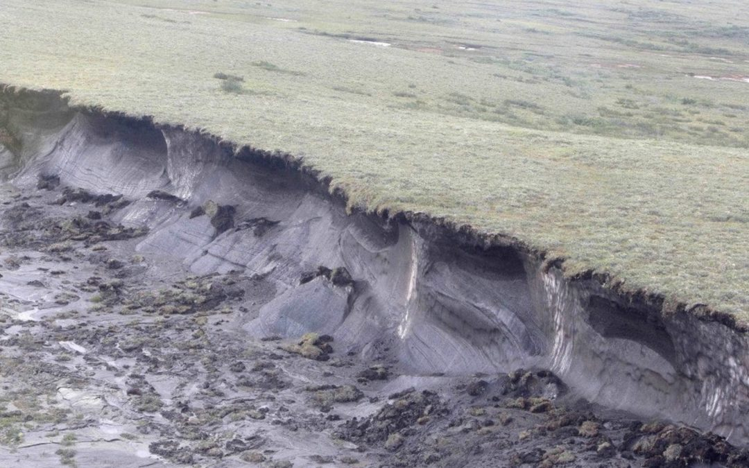 The Arctic's carbon bomb might be even more potent than we thought