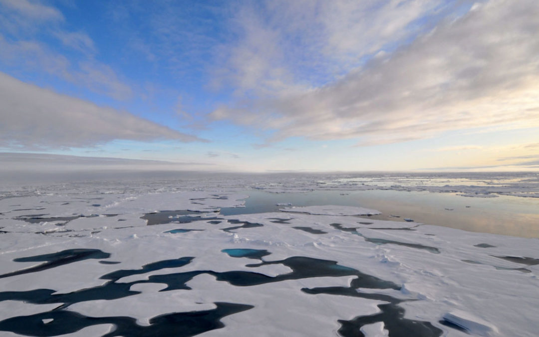 Alien Waters: Neighboring Seas Are Flowing into a Warming Arctic Ocean