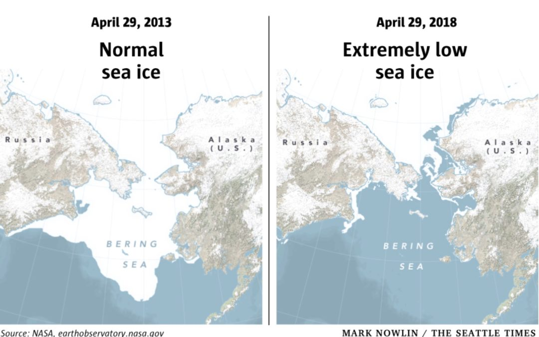'We've fallen off a cliff': Scientists have never seen so little ice in the Bering Sea in spring