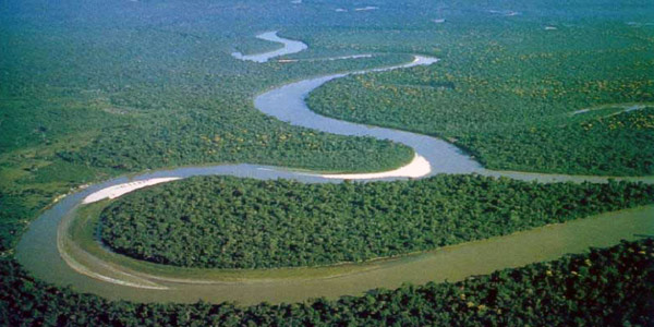 Ecuador To Sell A Third Of Its Amazon Rainforest To Chinese Oil Companies