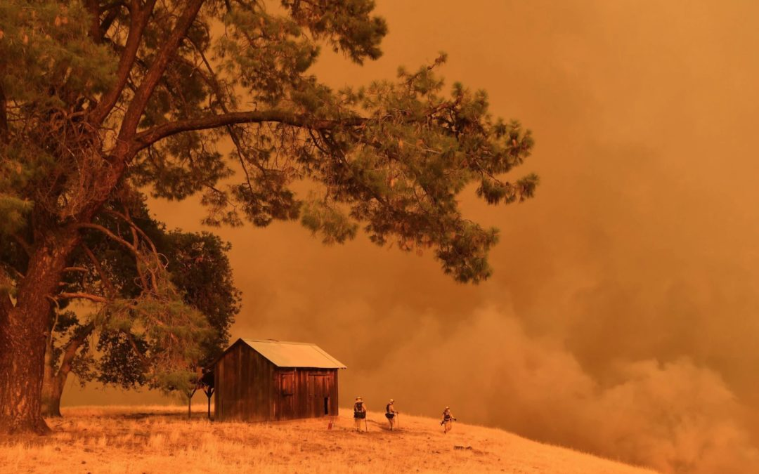 'The New Normal': Wildfires Roar Across the West, Again