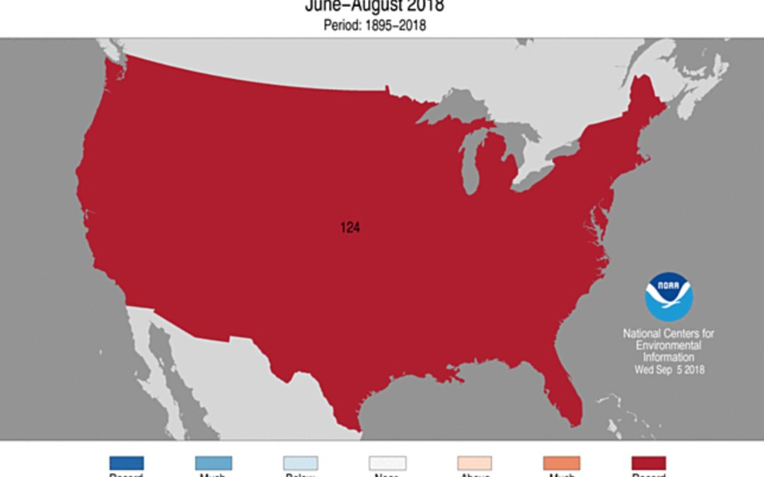 Hot nights: Summer low temperatures were warmest on record in Lower 48
