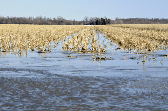 Climate-induced soil changes may cause more erosion and flash flooding