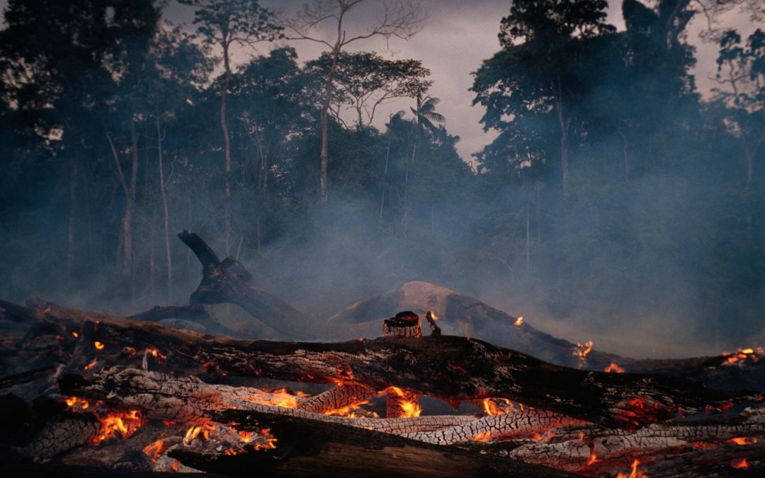 How Amazon forest loss may affect water—and climate—far away