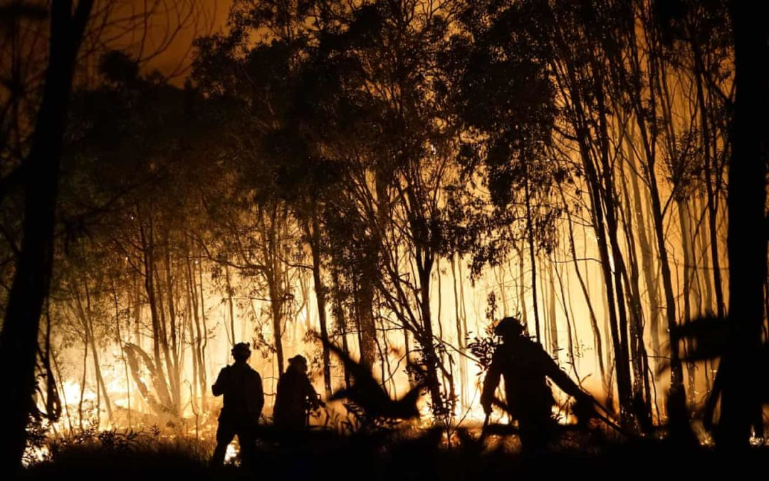 'Like opening a fan oven': Australia's rainforest threatened by bushfires