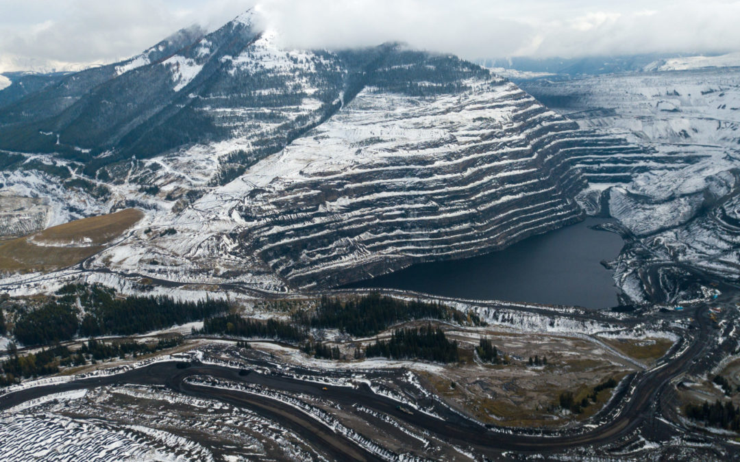 For decades B.C. failed to address selenium pollution in the Elk Valley. Now no one knows how to stop it.