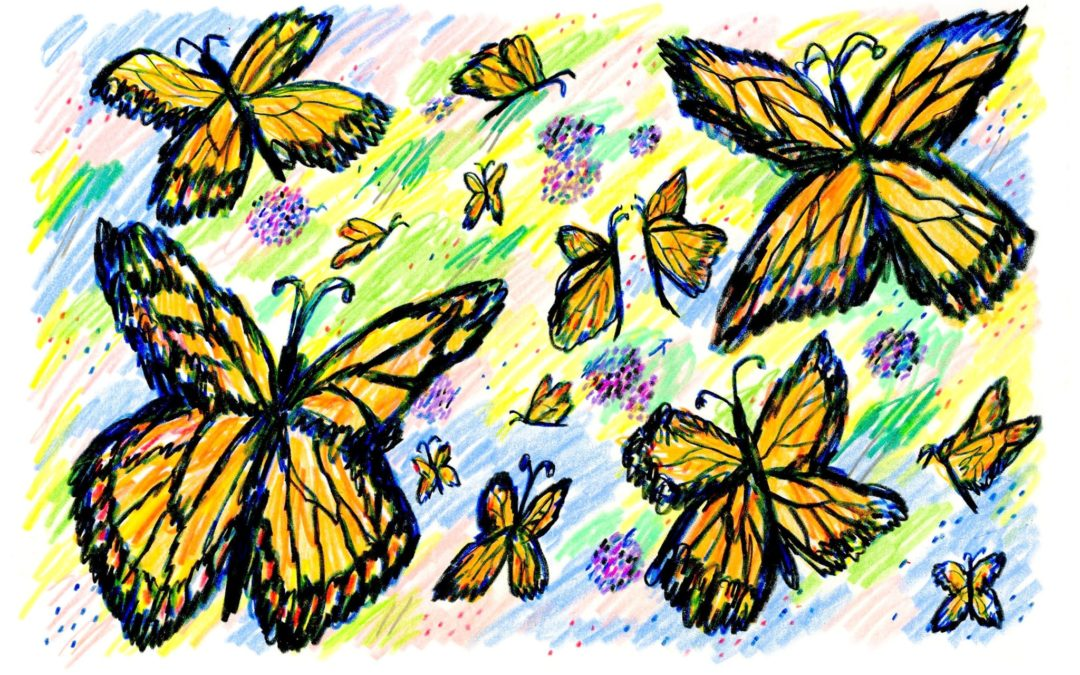Are We Watching the End of the Monarch Butterfly?