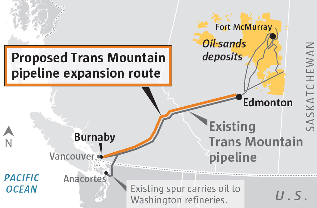Despite harm to Puget Sound orcas, Canada should expand Trans Mountain pipeline, energy board says