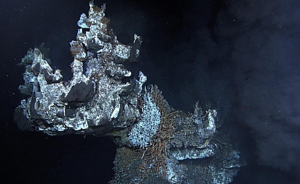 Deep-sea ecosystems under threat from an emerging ocean industry