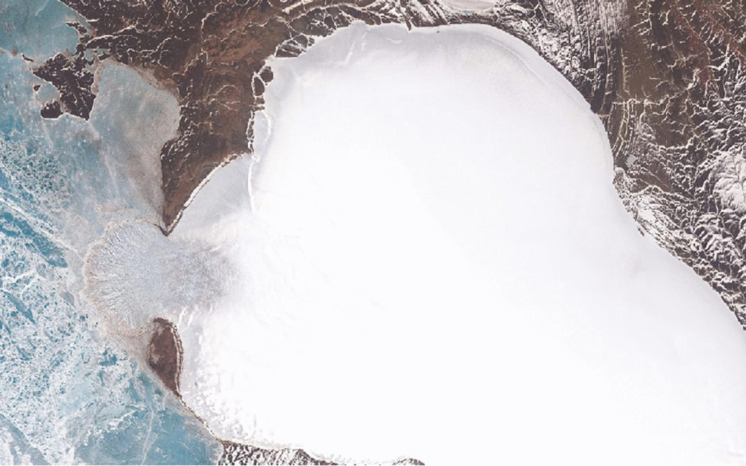 Glacier in Russian Arctic Goes From Moving 60 Feet a Year to 60 Feet a Day