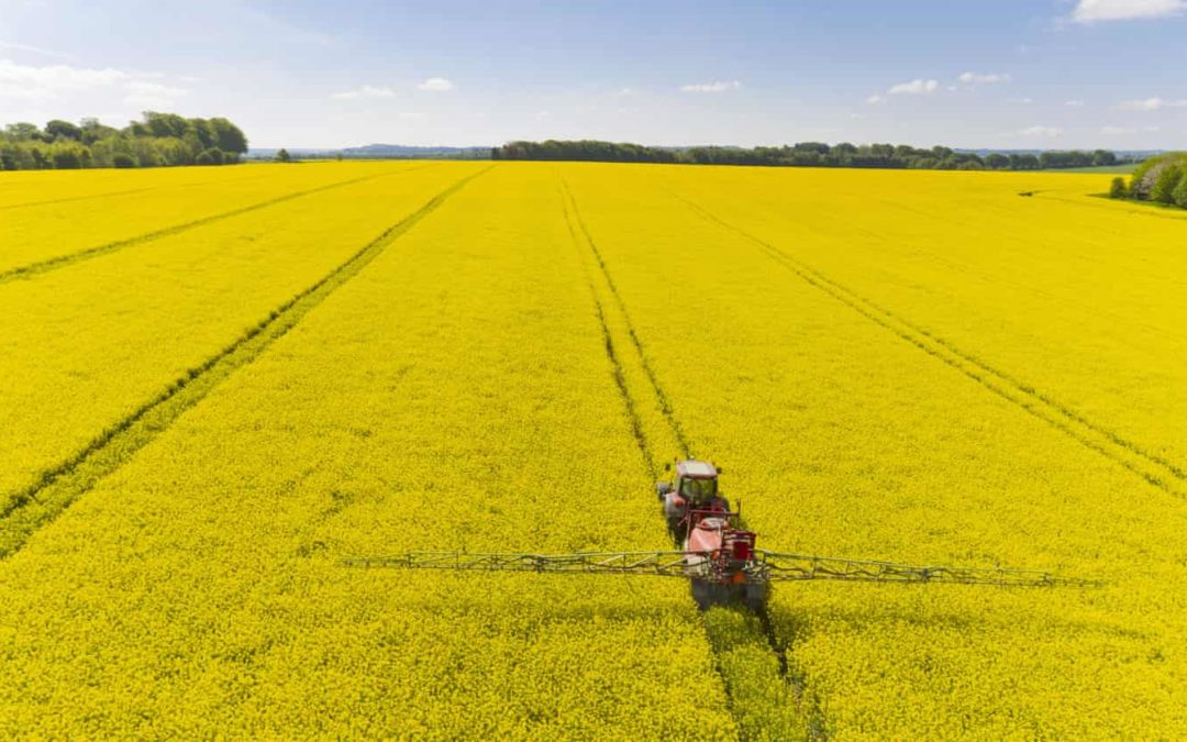 UK accused of 'silently eroding' EU pesticide rules in Brexit laws