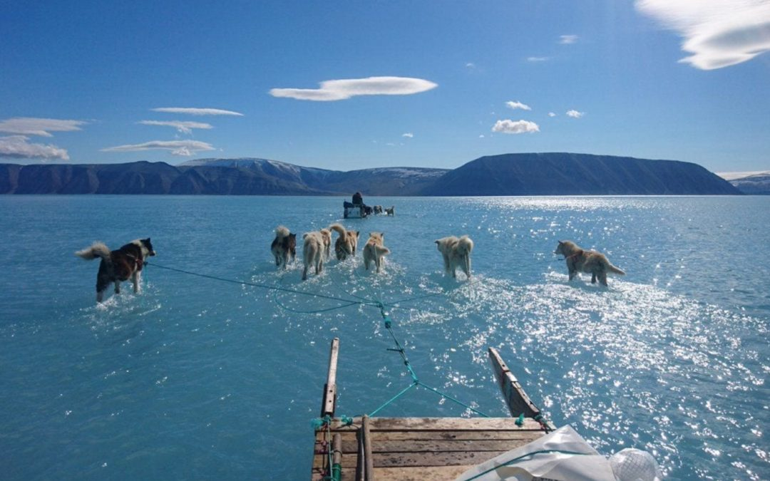 Temperatures leap 40 degrees above normal as the Arctic Ocean and Greenland ice sheet see record June melting