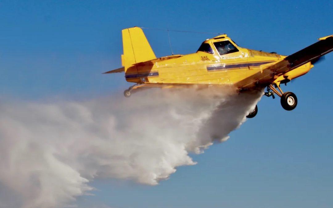 Trump EPA OKs 'Emergency' Use of Bee-Killing Pesticide on 13.9 Million Acres
