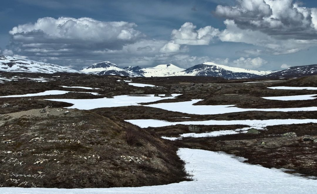 'Unprecedented' Wildfires Burned Across the Arctic Circle In June