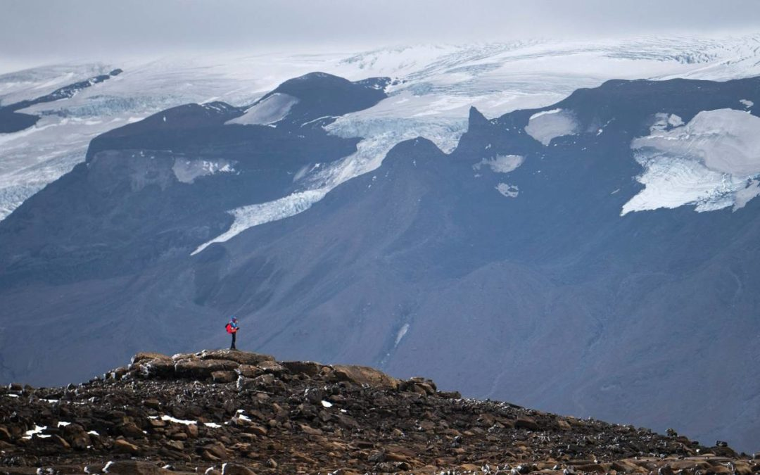 New Zealand glaciers won't survive this century, scientists say