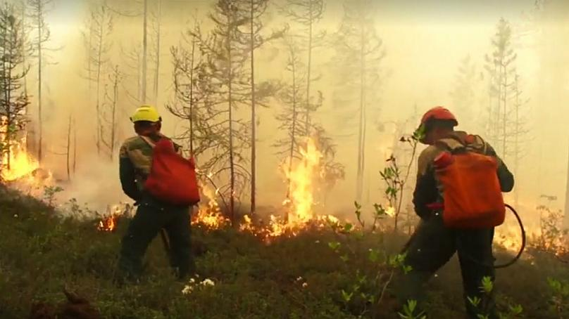 Russia's army called in as Siberia wildfires engulf area nearly as big as Belgium