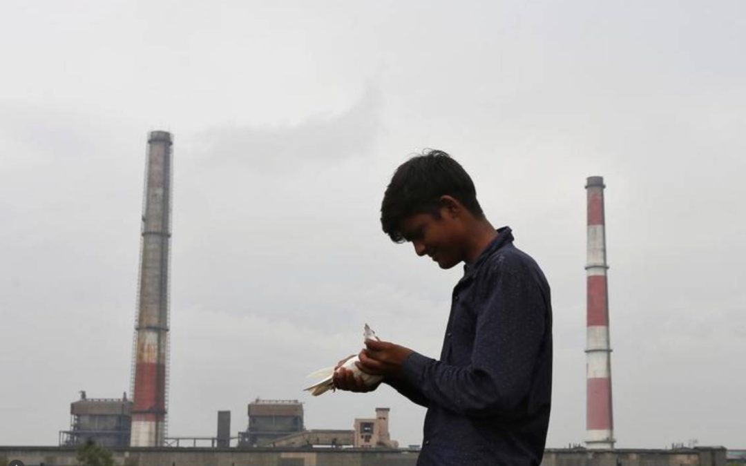 India expects coal-fired power capacity to grow 22% in 3 years