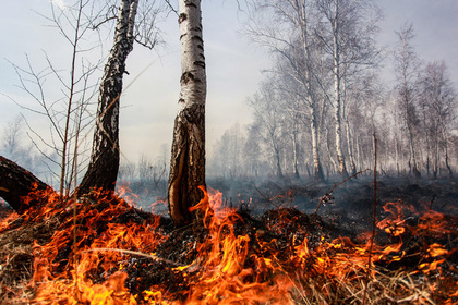 Why the Arctic is Smouldering