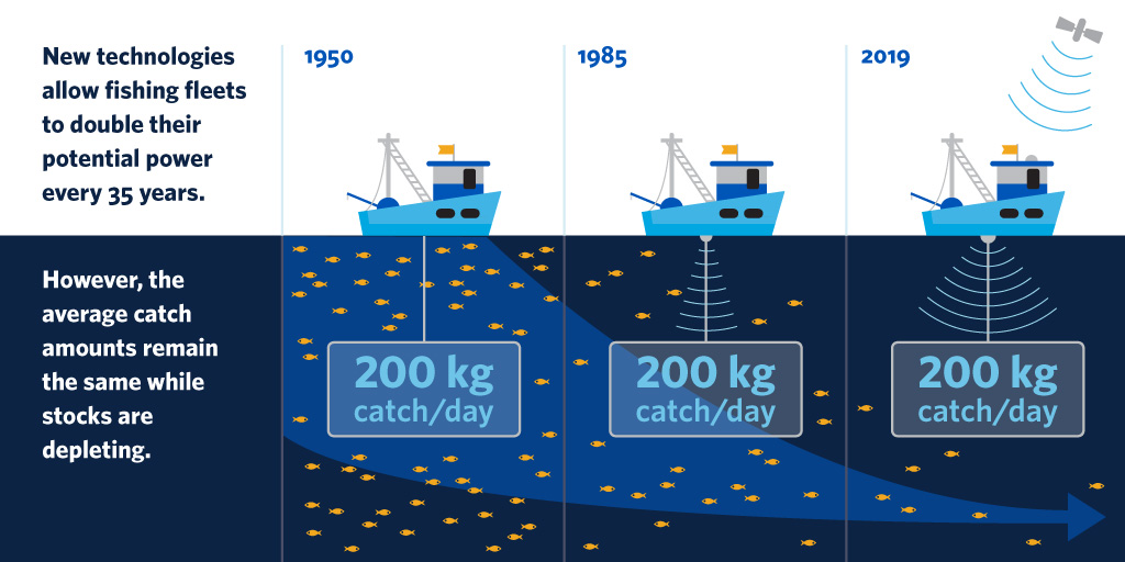 New technology allows fleets to double fishing capacity — and deplete fish stocks faster