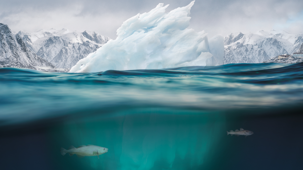 Choices made now are critical for the future of our ocean and cryosphere