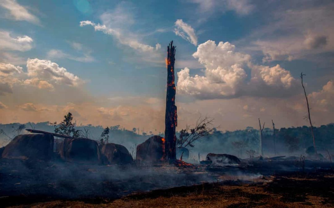 Amazon rainforest 'close to irreversible tipping point'