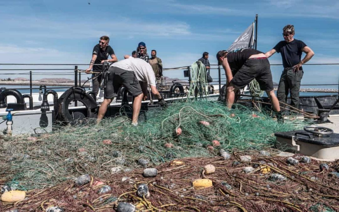 Dumped fishing gear is biggest plastic polluter in ocean, finds report