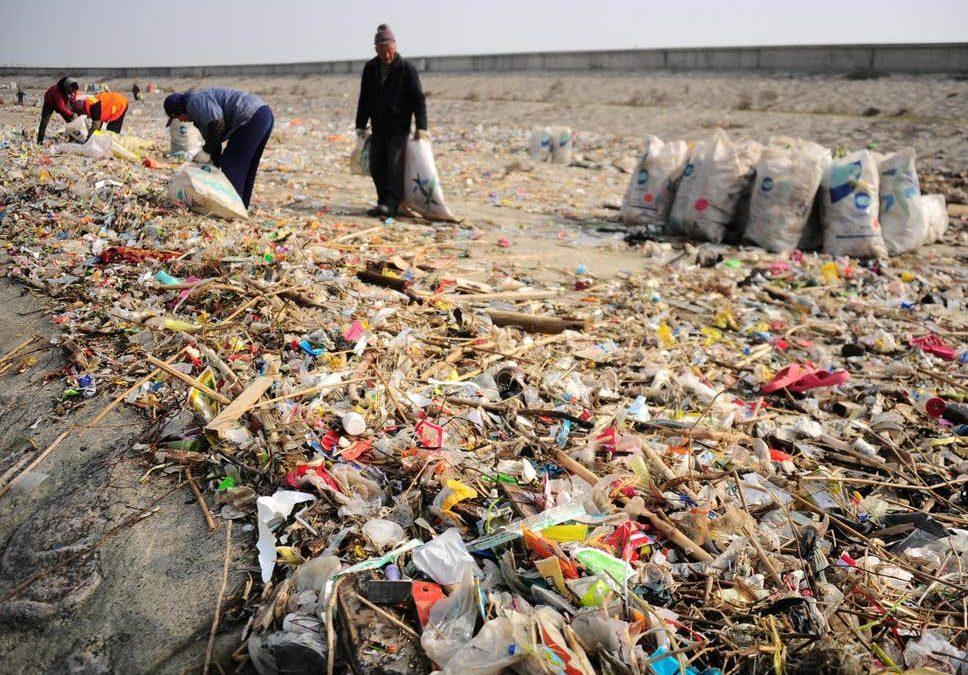 Plastic pollution off China's coast soars after drive to stop dumping it in rivers