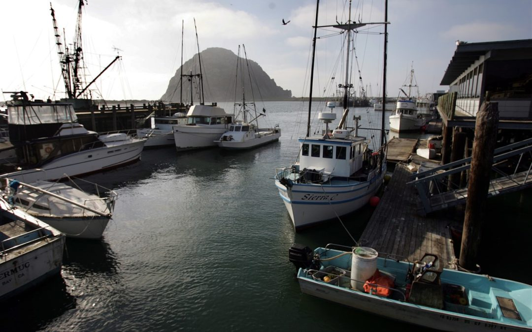 The world's oceans are acidifying — but it's happening twice as fast off California