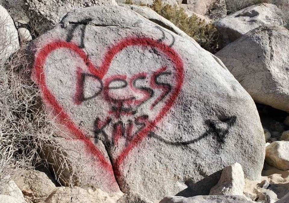Joshua Tree issues plea after vandals strike again