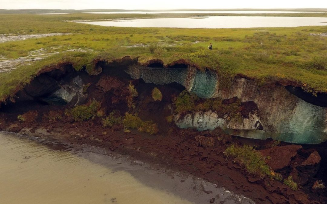 Arctic tundra is 80 per cent permafrost. What happens when it thaws?