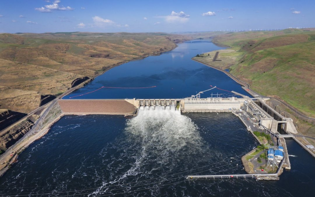 Feds reject removal of 4 Lower Snake River dams in key report