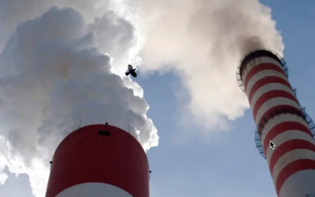 Why your reduced carbon footprint from lockdown won't slow climate change