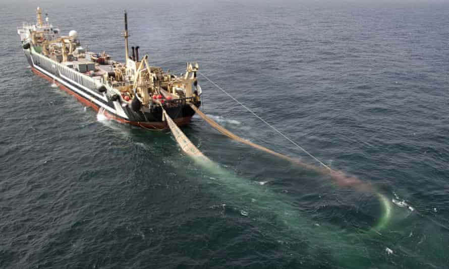 industrial fishing trawler