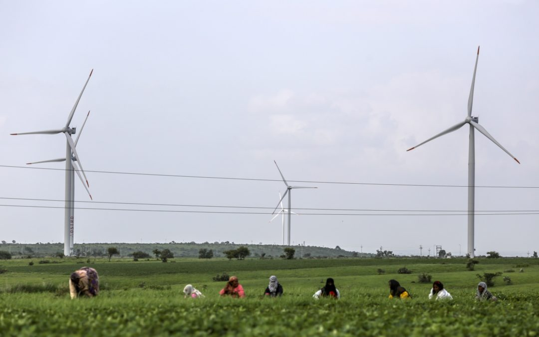 Wind turbines tower over agriculture workers