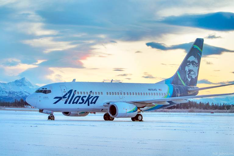 Airliner slams into bear on runway while landing at Alaska airport
