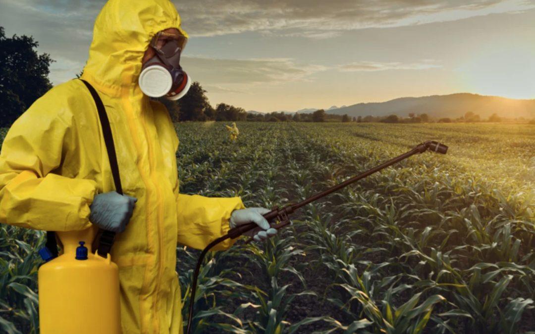 Glyphosate spraying
