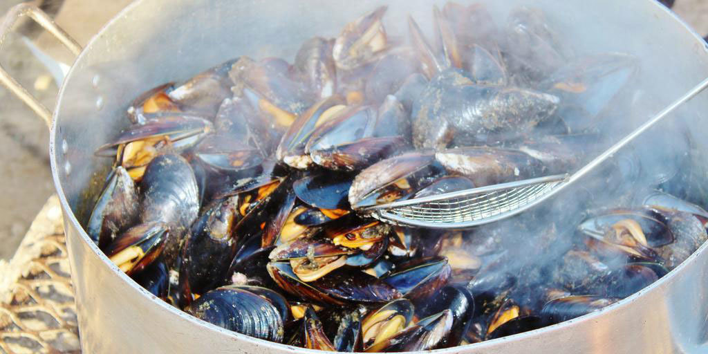Mussels Sold in Grocery Stores Around the World Contain Microplastic Particles