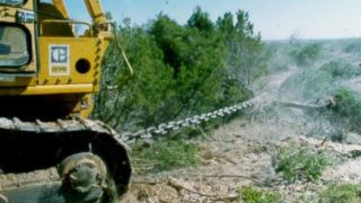 Land clearing with chaining