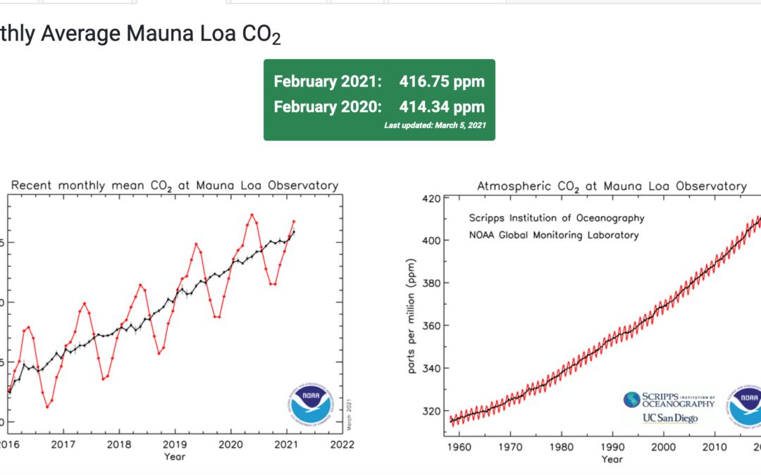 Monthly avg CO2