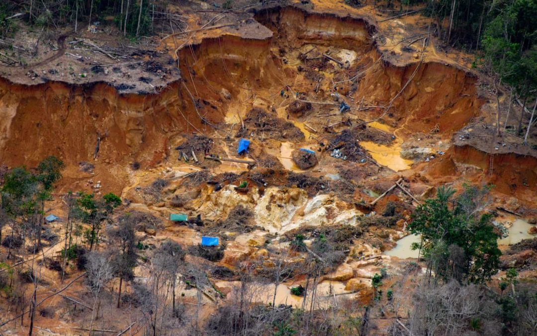 Gold Mining in Brazil